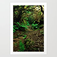 Forest Secrets Art Print