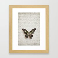 Graphium agamemnon butterfly Framed Art Print