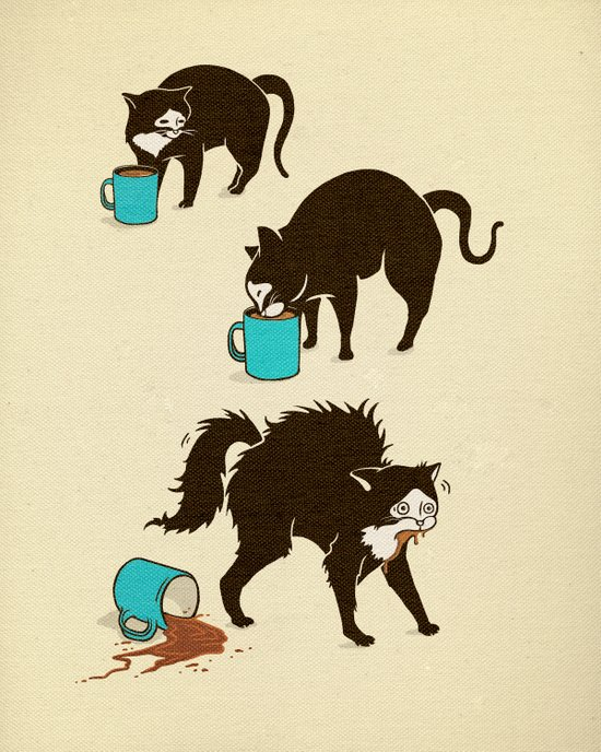 Coffee Cat Art Print