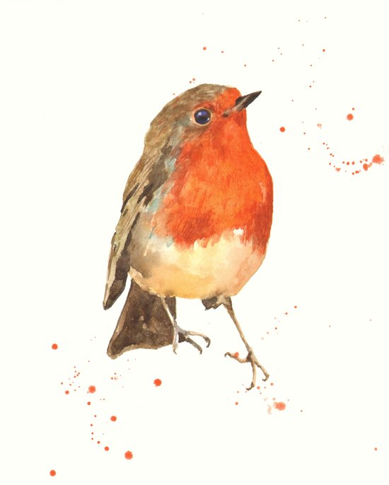 Robin, robin redbreast, songbird, garden birds, Christmas, hostess gift Art Print