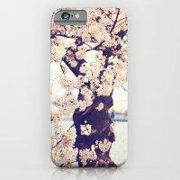 Cherry Tree in bloom iPhone 6 Slim Case