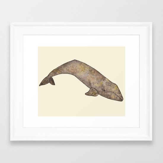 Gray Whale Framed Art Print