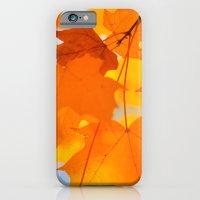 Yellow-orange Autumn iPhone 6 Slim Case