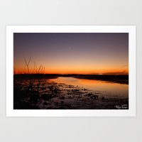 New dawn.... Art Print