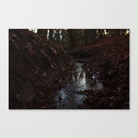 Red Stream Canvas Print