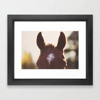 I'm all ears. Framed Art Print