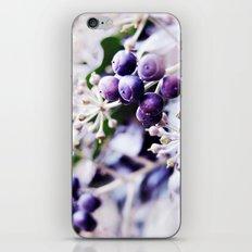 Vanilla Blue iPhone & iPod Skin