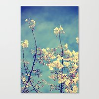 Canvas Print featuring Blossoms on Blue Sky by Lawson Images