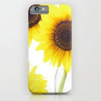 Three Sunflowers  iPhone 6 Slim Case