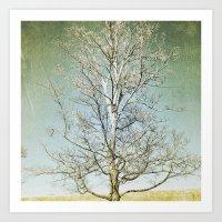 Tree 5 Art Print