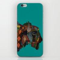 bison teal iPhone & iPod Skin