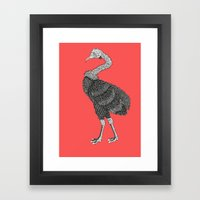 Greater Rhea Framed Art Print