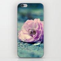 Rose On Beach iPhone & iPod Skin