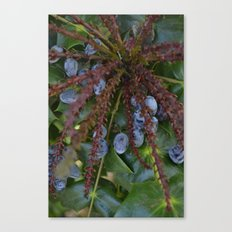 berry expolosion Canvas Print