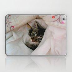 Kitten in Covers Laptop & iPad Skin