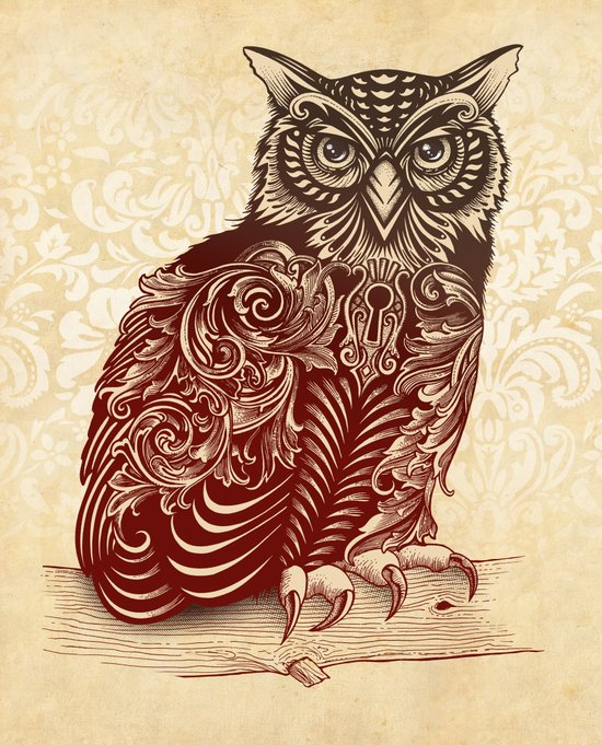 Most Ornate Owl Art Print