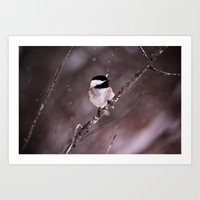 Chickadee In A Flurry Art Print