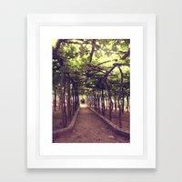 Lemon Grove in Ravello, Italy Framed Art Print