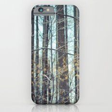 Forest of Trees. iPhone 6 Slim Case