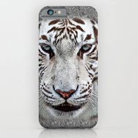 iPhone & iPod Case featuring BLUE-EYED BOY by Catspaws