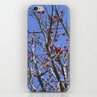 Blossoms On A Barren Tre… iPhone & iPod Skin