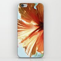Coral Hibiscus iPhone & iPod Skin