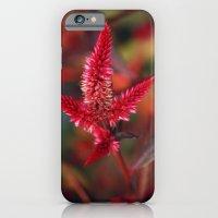 Wild Flower iPhone 6 Slim Case