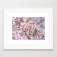 Framed Art Print featuring Icy Pink Blossoms - In Memory of Mackenzie by Shawn King