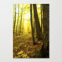 Autumnal Pathway Canvas Print
