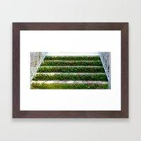 Grassy Stairs Framed Art Print