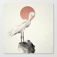 White Wings Canvas Print