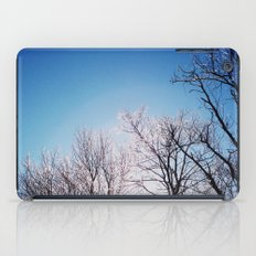 An Icy Winter iPad Case