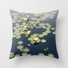Garfield Park Conservatory Throw Pillow