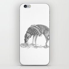The Deer  iPhone & iPod Skin