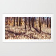 forest impressions Art Print
