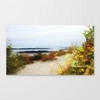 Coastal Wildflowers  Canvas Print