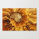 AMAZING AMMONITE Canvas Print