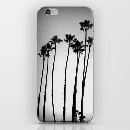 palm trees land iPhone & iPod Skin