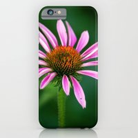 Pink Cone Flower iPhone 6 Slim Case