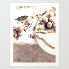 Still Life of Dried Fruits - Fine Art Photo for Interior Furnishings Art Print