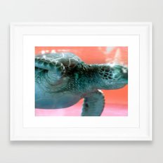 Trippy the Turtle Framed Art Print