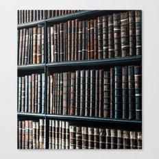 bibliotheque Canvas Print