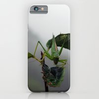 Grasshopper iPhone 6 Slim Case