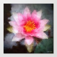 Water Lily Flower Canvas Print