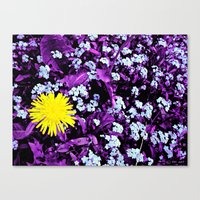 Yellow Rules Canvas Print