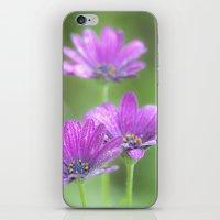 Comos Flowers iPhone & iPod Skin