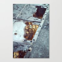 Glimpse Canvas Print