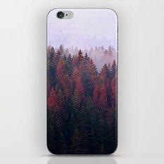 The Ridge iPhone & iPod Skin