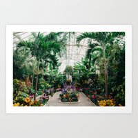 The Main Greenhouse Art Print