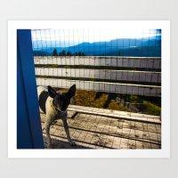 Sparky the dog Art Print